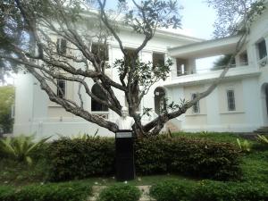 Jain statue front school
